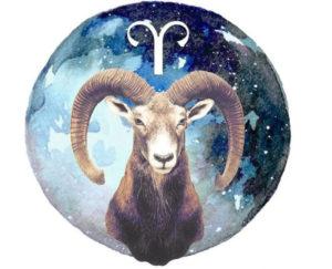Энергетика подарков: что подарить детям по знакам зодиака/ Овен